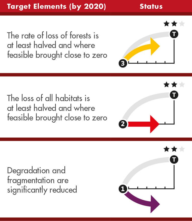 5-target-elements